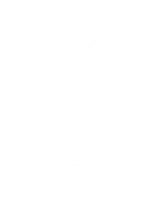 CFS Foundation